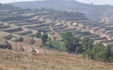 国土资源部:将每年开展全国耕地质量等别年度更新与监测评价工作