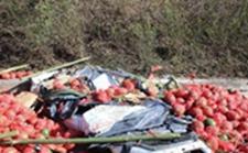 """高速路上小轿车遭遇超30吨西瓜的""""重击"""""""