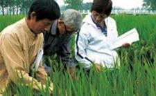 福建南平:推广科技特派员制度 注入农业科技新能量