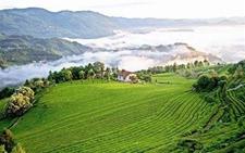 内蒙古:确定第二批国家农产品质量安全县试点单位名单
