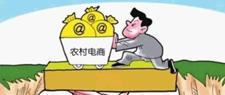 海南大学生返乡创业农产品网上卖