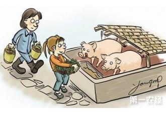 养猪场设计:猪场规划设计的步骤介绍