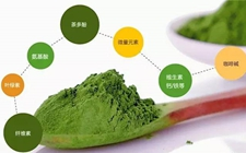 茶叶中常见的三大物质有什么功效作用?