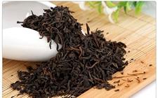 茶叶可以用来治疗肠胃疾病吗?