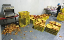 <b>长春:一面包加工厂无证经营 卫生脏乱原料随意堆在污水地面</b>