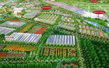吉林:第九批国家农业标准化示范项目 吉林再添六个
