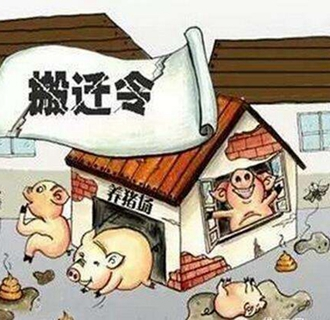 禁养区养猪场拆迁,到底迁往何处合适?