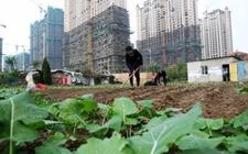 北京:今后五年供应住宅用地6000公顷 多措并行遏制房价上涨