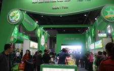 <b>中国上海大米秀--2017上海优质大米及精品杂粮展览会</b>