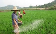 宁夏:积极推广绿色农产品加工业建设发展