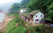贵州赤水:大力推进绿色扶贫产业发展