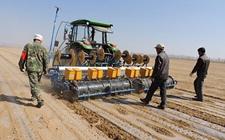 新疆:使用卫星导航播种提高耕地利用率