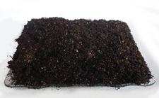 多肉养殖:多肉植物常用栽培介质的介绍