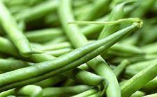 滨州:家中聚餐后17人集体住进医院 疑似食用未熟芸豆导致食物中毒