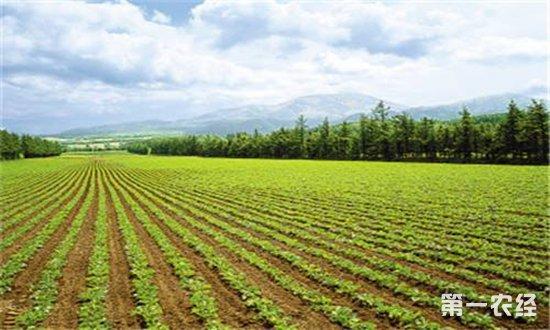 耕地轮作补贴