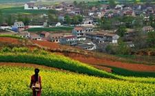 陕西蓝田:全面打造休闲农业和乡村旅游产品体系