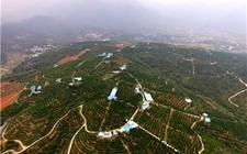 湖南:全面加快农村饮水安全巩固提升工程及水利基础设施建设