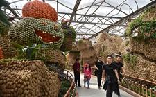 山东寿光:第十八届国际蔬菜科技博览会在山东寿光开幕