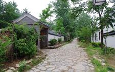 """江苏徐州:探索农村农业优化升级提质增效""""三增""""之路"""
