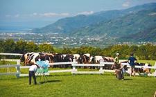 农业部办公厅公布第一批休闲观光牧场名单