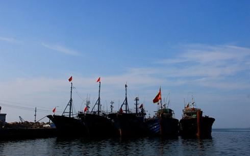 黄河流域禁渔制度的可行性进入深入实地调研阶段