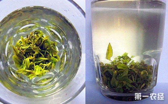 平水珠茶有称什么