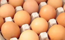 食安知识:鸡蛋营养丰富婴幼儿需多食?谨防鸡蛋过敏!