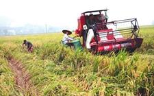 江苏:全省首批15个粮食生产全程机械化示范县进展超过预期