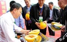 山东莘县:加快农业产业转型升级 促进瓜菜产业经贸合作