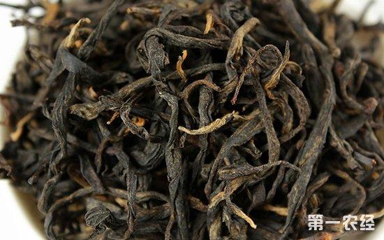 古树红茶的特点