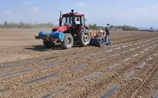 """新疆:引入可降解地膜 助力农民实现""""绿色""""增收"""