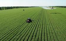 """""""田管家""""促进农业经营主体 探索绿色高效农业道路"""