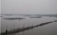 河北东光:探寻地下水漏斗区出路 解决县区缺水问题