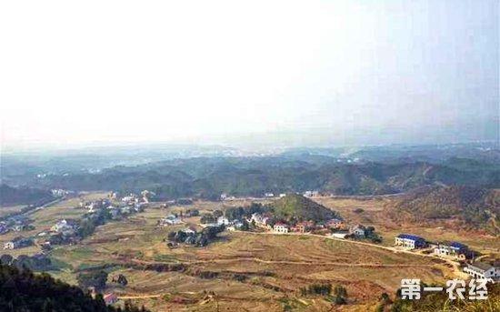 农村视野开阔的风景
