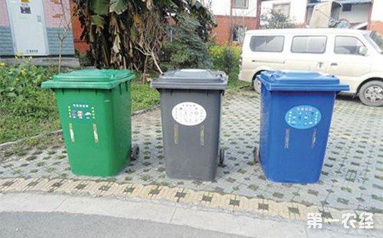 乡村垃圾处理图片