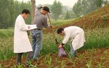 山西:启动3000亩受污染耕地治理与修复行动