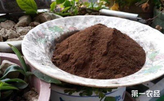 这些生活中随手一扔的小东西  拿来养盆栽植物有大用处!