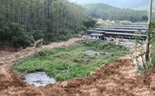 湖南邵阳:全面进行环境集中整治及生态修复工作