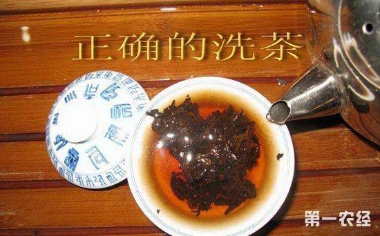 洗茶的作用与洗茶的步骤