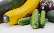 海南:推广种植航天瓜菜约8000亩 高产量菜园成观光地