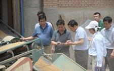 多部门联合安排部署全国夏季粮油收购工作