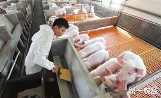 猪场消毒用什么能起到最好效果?