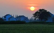 四川:多项改革如何运用 打造新型农业经营体系