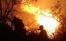 内蒙古:数千名森警官兵昼夜奋战森林火场