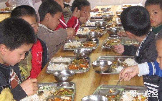 农村义务教育学生营养改善计划