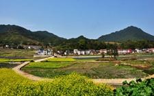 山东:财政拨付3430万元进一步改善村镇人居环境