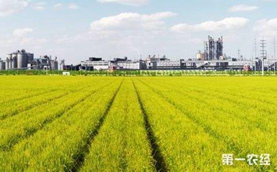 智慧农业建设