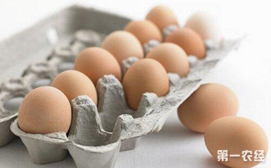 """真可怕!变质鸡蛋成了幼儿园孩子口中的""""营养食物""""?"""