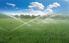 农业部:启动丹江口发展绿色农业