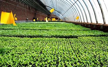 解决现代农业发展的弱点 快速精准发展农业
